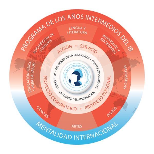 arji certificaciones intermedios ib